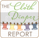 The Cloth Diaper Report